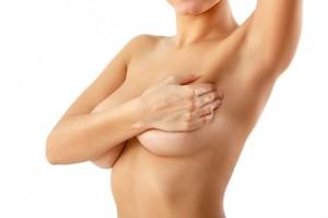 mammologia